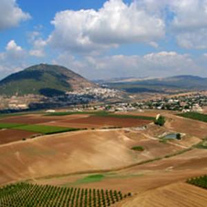 קבוצת השקעה – קרקע חקלאית בכפר תבור